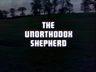 The Unorthodox Shepherd